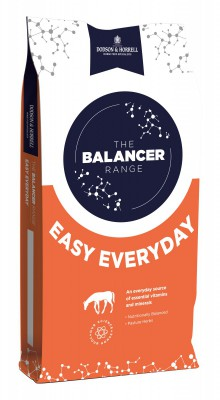 Easy Everyday Balancer