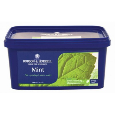 Mint - Dried
