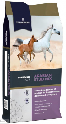Arabian Stud Mix
