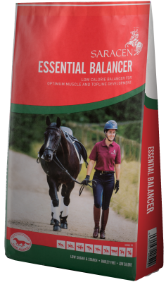 Essential Balancer